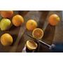 תמונה של עוגת תפוזים ופרג